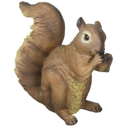 Zingz and Thingz Nibbling Squirrel Garden Garden Garden Statue 12a