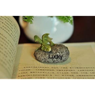Top Collection Miniature Fairy Garden and Terrarium Lucky Dragon Stone