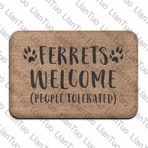 LianTuo Ferrets Welcome People Tolerated Cool 15.7 X 23.6 in Absorbent