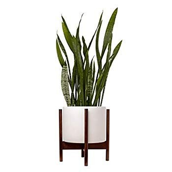 Indoor Planter Large Pot for Plants with Mid Century Modern Wooden Sta