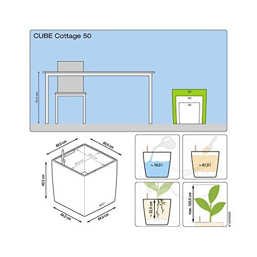 Lechuza Cube Cottage 50 Self-Watering Garden Planter for Indoor and Ou