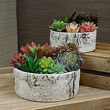 2 Piece Ceramic Birch Log Flower Pot Set Indoor Outdoor Garden Accesso