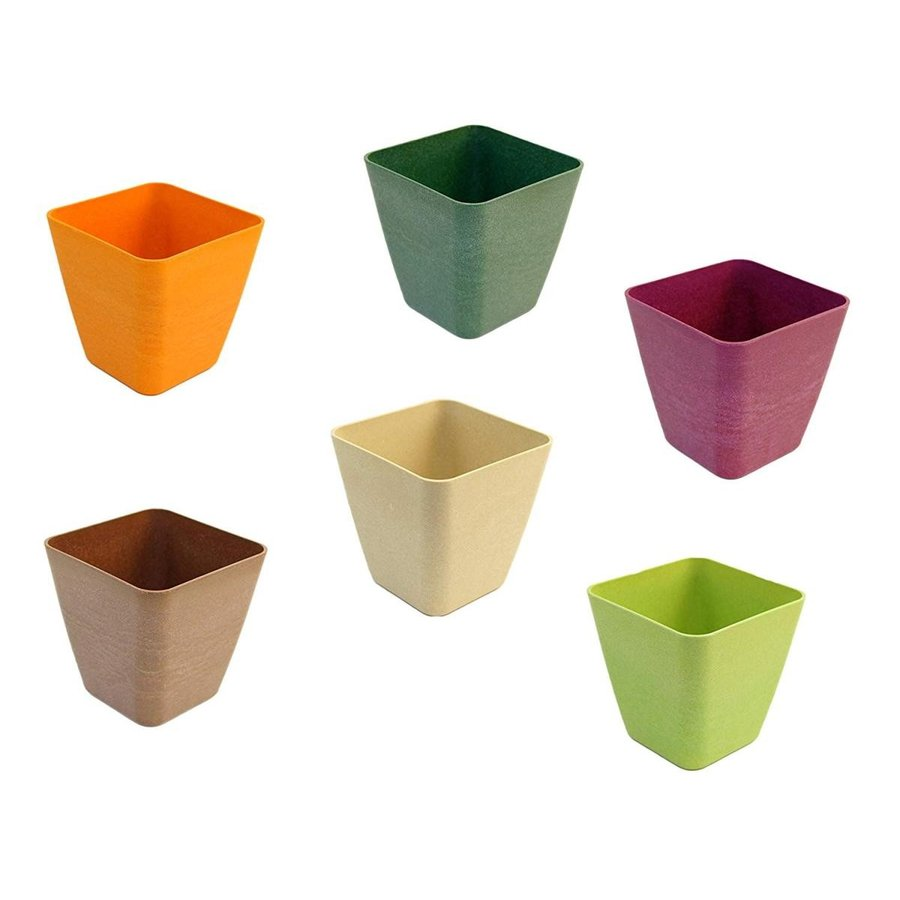 Set of 6 Tape赤 Square Mini Planters in Assorted Colors, Made of Bamb