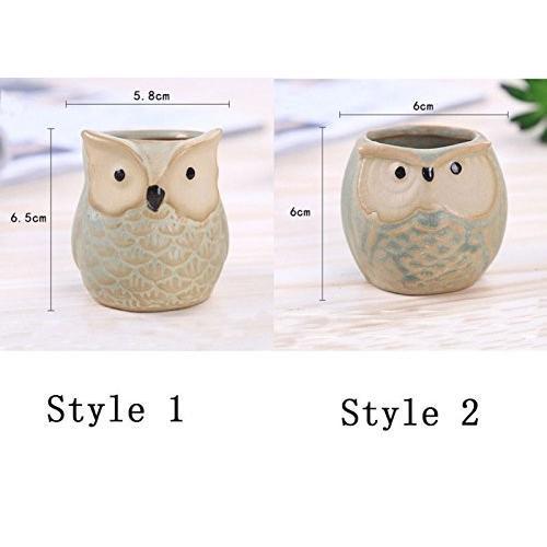 IMZ Set of 6 Owl Design Mini Ceramic Pot, Succulent Plant Pot, Cactus