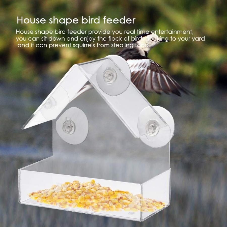 Window Bird Feeder Wild Birds Outdoor Garden Perspex View Hanging Suction WO