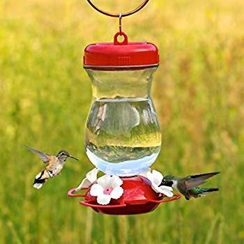 【国内正規品】 Perky-Pet 132TF 24-Ounce Top Glass Top Feeder Fill Hummingbird Hummingbird Feeder, 魚食生活:da04d69e --- sonpurmela.online