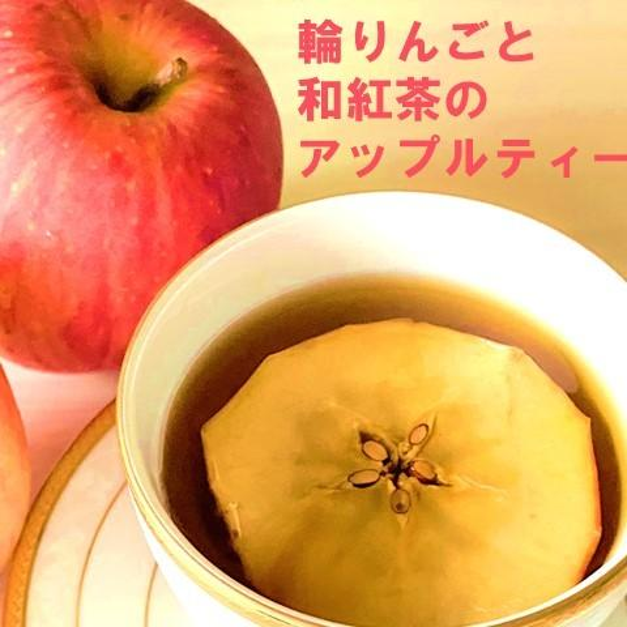 紅茶 ティーバッグ 国産 アップルティー 和紅茶 乾燥りんご 無添加 2袋セット|lf-shop