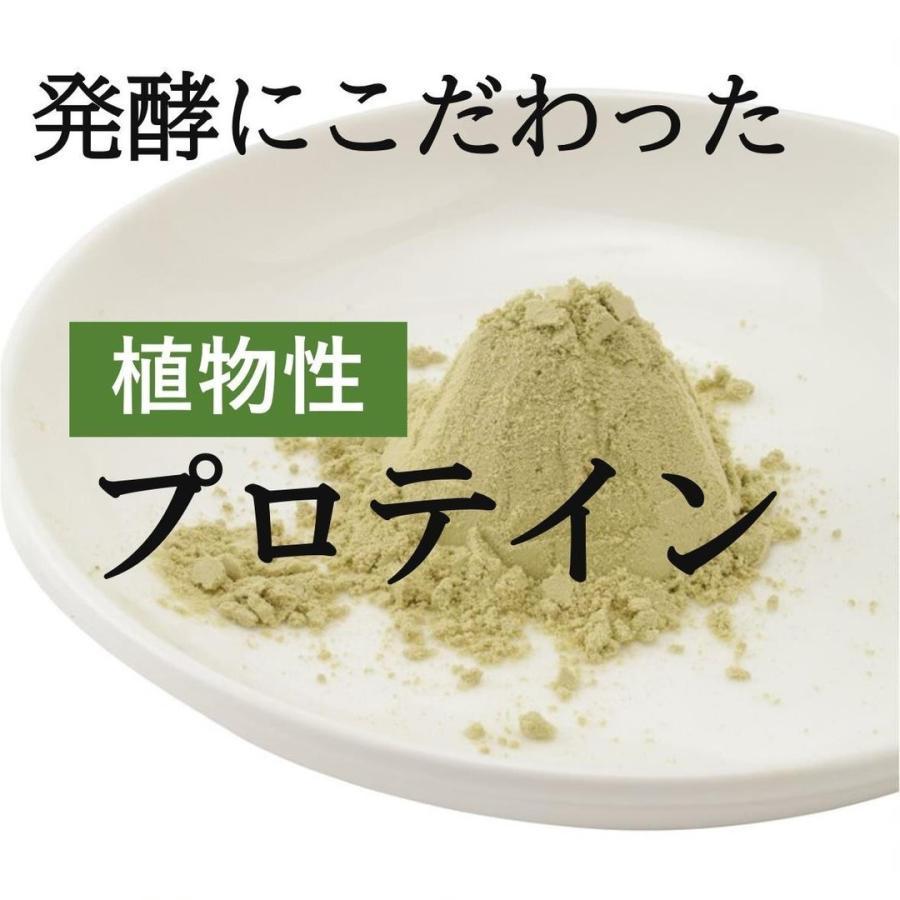 プロテイン 女性 美容 植物性 ピープロテイン 酒粕 抹茶 発酵のススメ 香料不使用|lf-shop|09