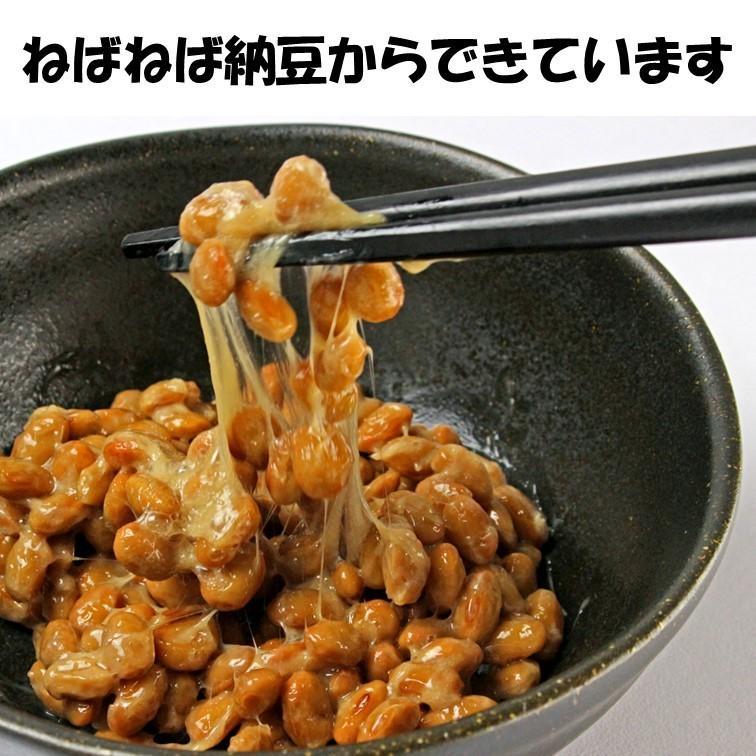 乾燥納豆 100g ドライ納豆 国産 フリーズドライ ひきわり納豆 lf-shop 07