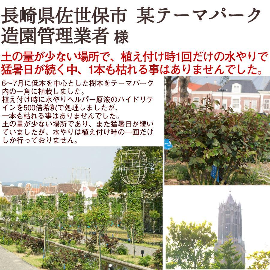 水やり回数半減 水やりヘルパー 500ml 植物用土壌保水剤 保湿材|life-eco|20