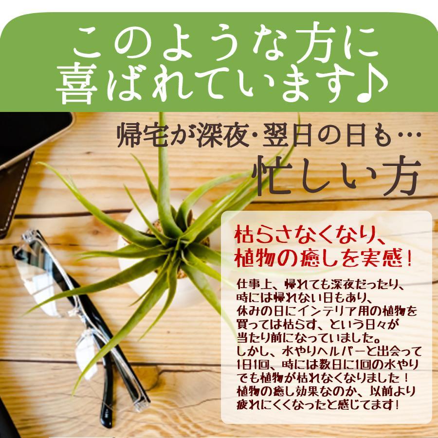 水やり回数半減 水やりヘルパー 500ml 植物用土壌保水剤 保湿材|life-eco|06
