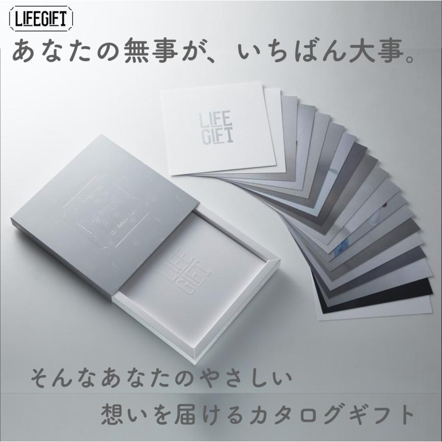 非常用持ち出しセットも掲載 防災グッズだけを厳選したカタログギフト LIFEGIFT 送料無料|lifegift|03