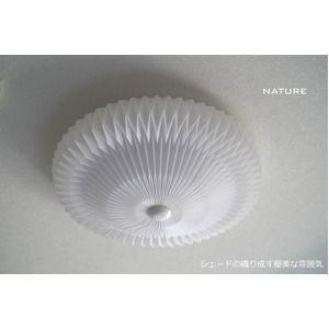 ds-1804083 シーリングライト(照明器具)LEDタイプ/4500ルーメン 自然光色 花モチーフ ヨーロッパ風 〔リビング照明/ダイニング照明〕