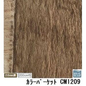 ds-1921107 サンゲツ 店舗用クッションフロア カラーパーケット 品番CM-1209 サイズ 200cm巾×10m (ds1921107)