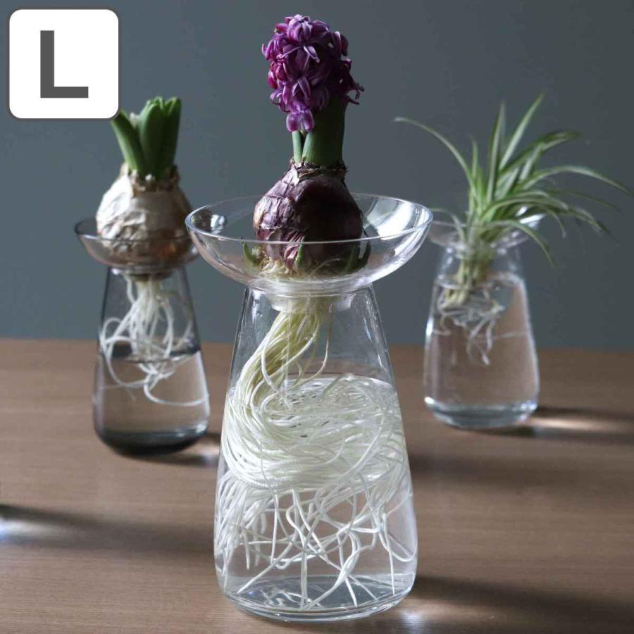 キントー KINTO 花器 AQUA CULTURE VASE Lサイズ ガラス 無料 グリーン 花瓶 栽培 メーカー公式 花 ハーブ フラワーベース おしゃれ