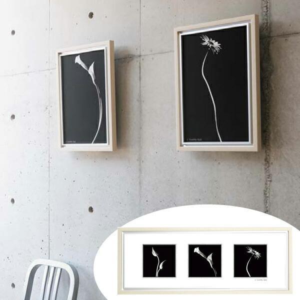 インテリアアート 池田邦彦 スタイリッシュフラワー 28 ( アートパネル 壁掛け 壁飾り アート アートデコ ウォールアート インテリア )