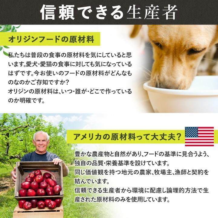 オリジン オリジナル 2kg 【正規品】 ORIJEN ドッグフード 子犬 成犬 シニア犬 高齢犬 lloyds-inc 07