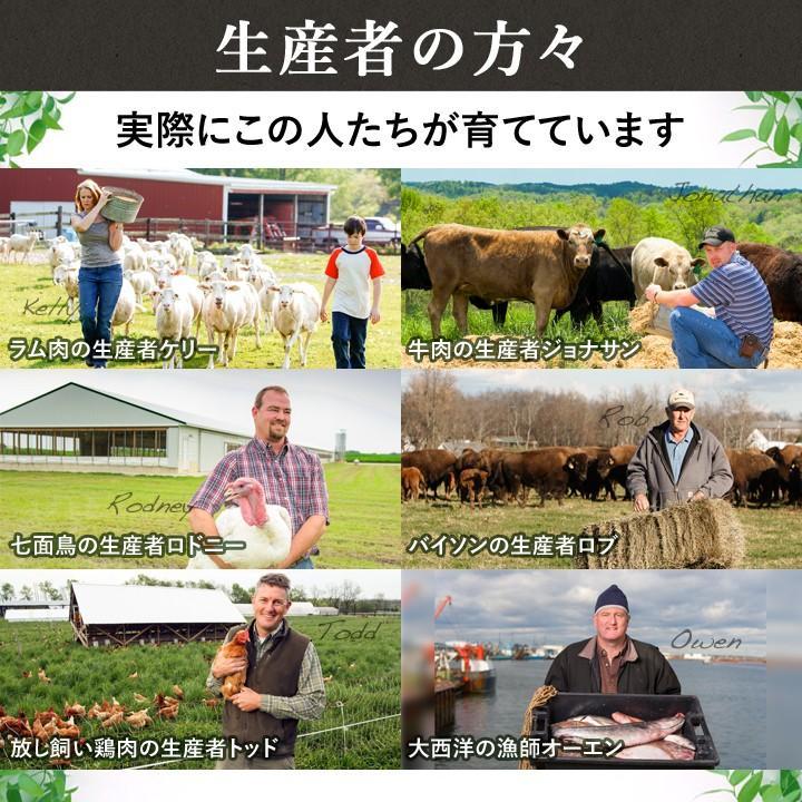オリジン オリジナル 2kg 【正規品】 ORIJEN ドッグフード 子犬 成犬 シニア犬 高齢犬 lloyds-inc 08