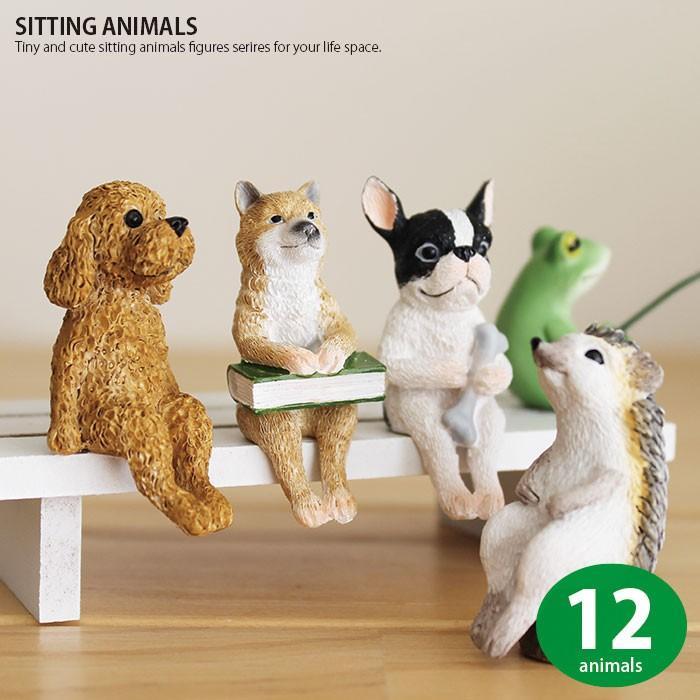 ガーデニング オーナメント 置物 かわいい 動物 マスコット ミニチュア SITTING 犬 ブタ 猫 再再販 カエル 蛙 毎週更新 ANIMAL ハリネズミ
