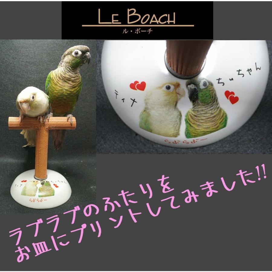 ル・ボーチSサイズ / 爪研ぎスタンド インコ オウム 鳥|lovewing-pro|02