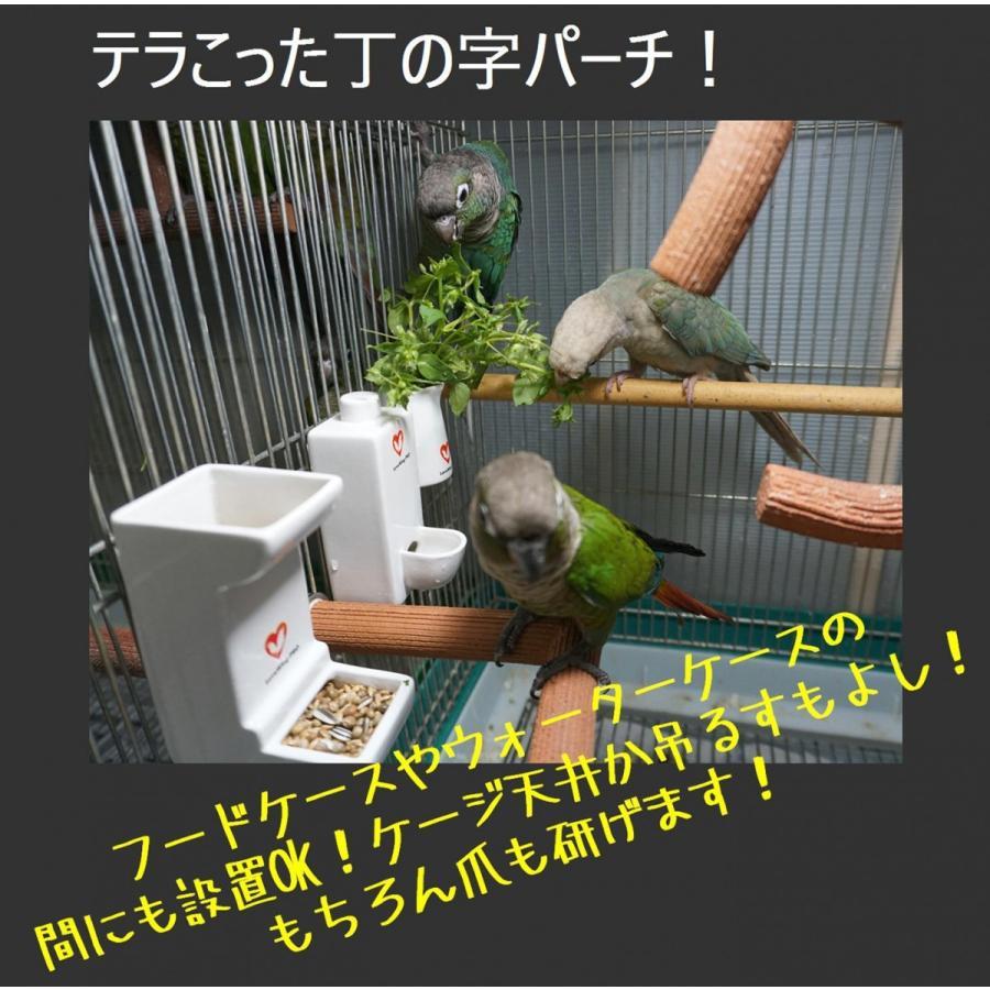 丁の字パーチ!Lサイズ / 爪研ぎパーチ インコ オウム 鳥|lovewing-pro|03