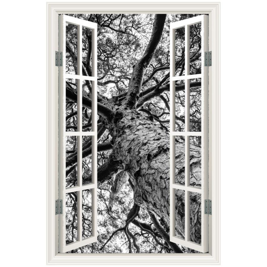 ウォールステッカー 窓枠 木 モノクロ 日本製 Mu3 壁紙 シール ツリー 木々 枝 ブラック 白黒 風景 景色 北欧 旅行 写真 インスタ Acw 0030 Mtn S Lucca 通販 Yahoo ショッピング