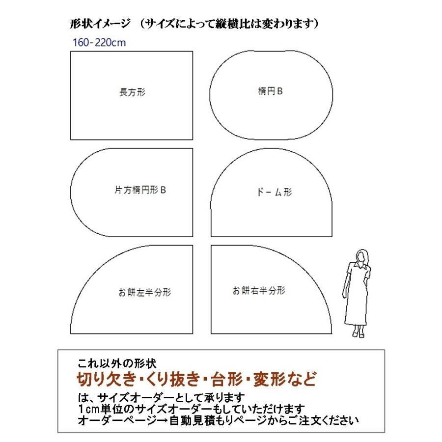 カーペット ラグマット/東リ/グレース/160×220cm 長方形 楕円 他/9色/業務用 住宅用/日本製 lucentmart-interior 03