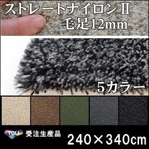 ラグ ラグマット/東リ/ストレートナイロン12mm/240×340cm 長方形 楕円/5色/受注生産