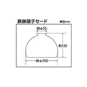 レトロ&モダンインテリアに! 明治28年創業後藤照明 GLF-0138 鉄鉢硝子セード  (glf0138)|luciva|02