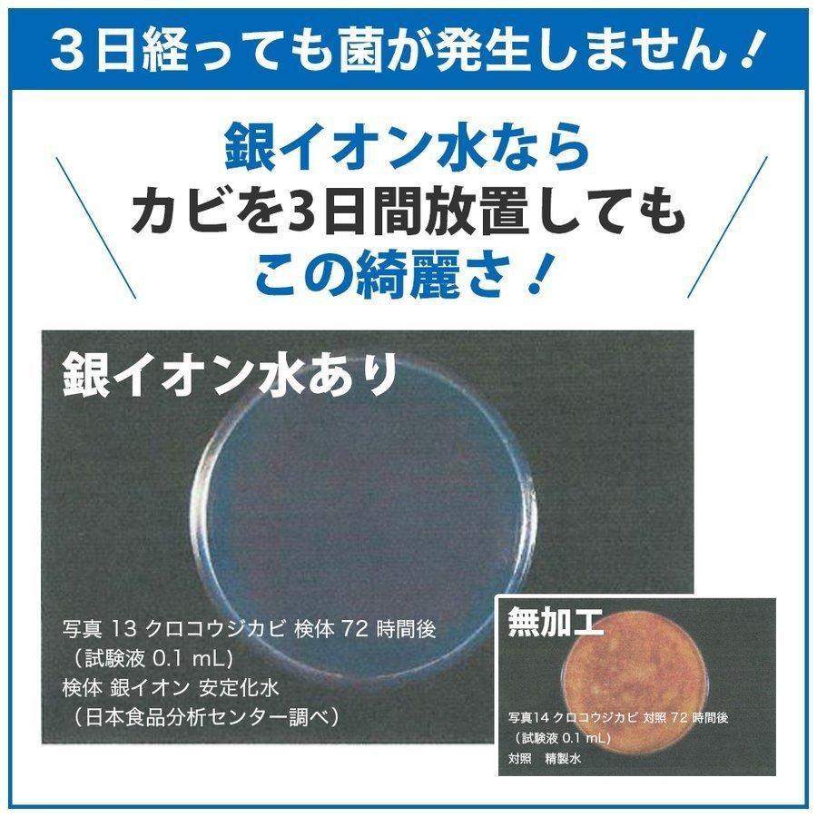 マスクスプレー ECOSAS Ag+ 銀イオン水 100ml×12本組 除菌 抗菌 消臭効果|luckykogei|05