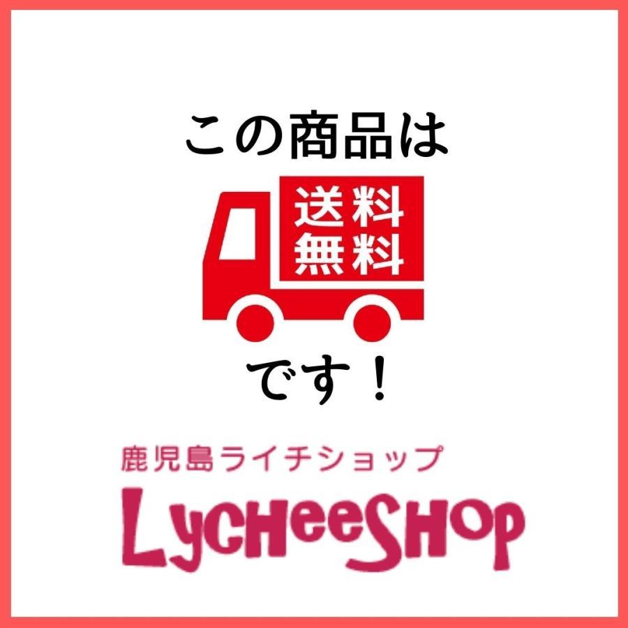 ライチ苗木(チャカパット)4年もの(取り木苗木)|lycheeshop|03