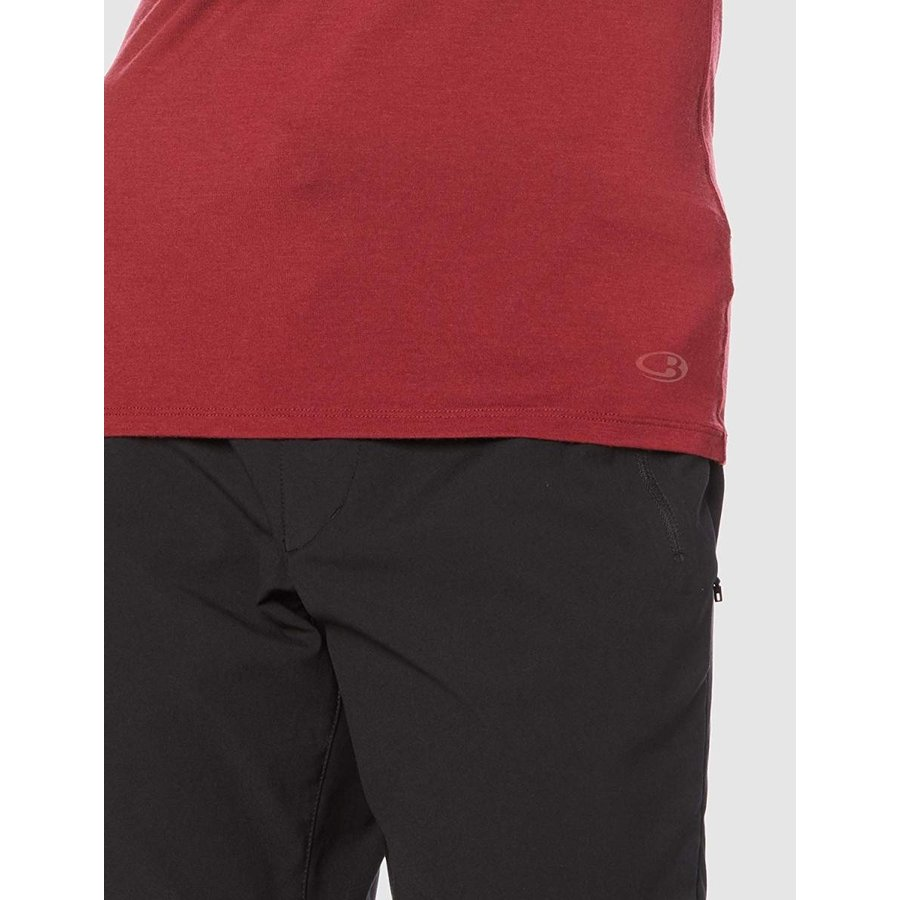 想像を超えての アイスブレーカー Tシャツ アナトミカ ショートスリーブ クルー メンズ カベルネ US L (日本サイズXL相当), フェアリーベル f9414878