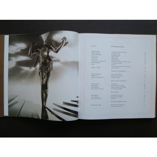 「サルバドール・ダリ シュルレアリストの天使(Salvador Dali The Surrealist Angel)」[B190067]|machinoiriguchi2|04