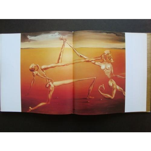 「サルバドール・ダリ シュルレアリストの天使(Salvador Dali The Surrealist Angel)」[B190067]|machinoiriguchi2|05