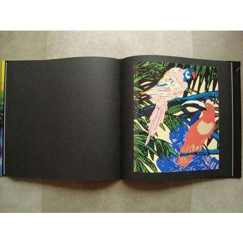 「ベッペ・スパダチーニ作品集 トロピカルドリーム(Beppe Spadacini : Tropical dream)」[B210003]|machinoiriguchi2|04