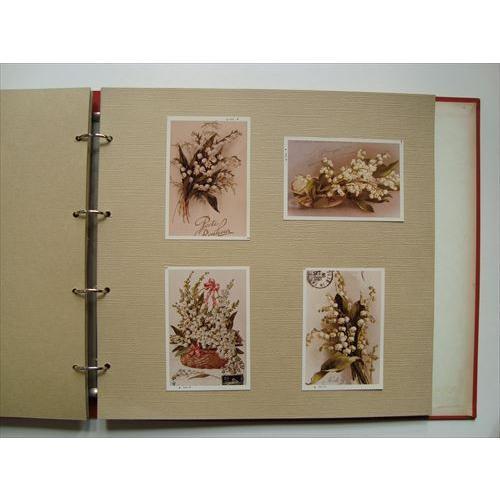 「花の装飾画の写真120枚入りアルバム」[B210004]|machinoiriguchi2|04