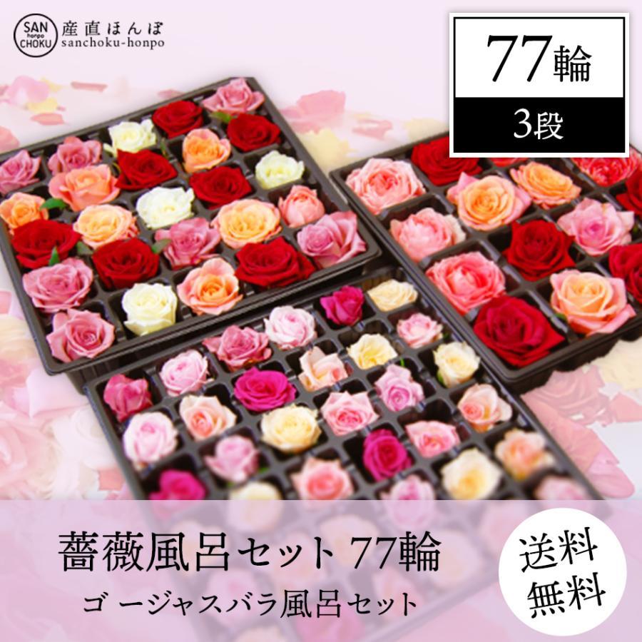 薔薇風呂 セット77輪