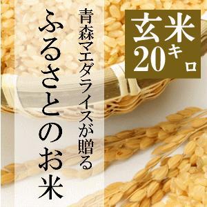 米 20kg 玄米 10kg×2袋小分け 令和2年 青森県産 ふるさとのお米|maeda-rice