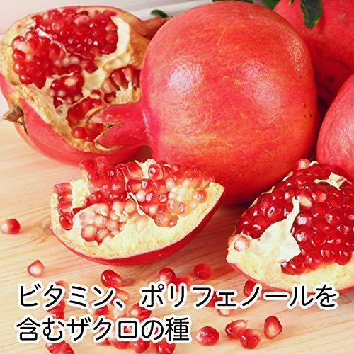 自然健康社 ザクロシード 40g×2袋 チャック付き袋入り|maeharu-store|02
