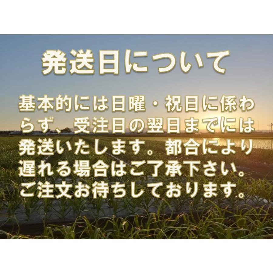 野菜ソムリエの甘い黒にんにく 送料無料 500g 波動熟成 (完売しました。)  maggysfarm-towada 13