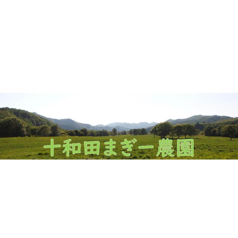 野菜ソムリエの甘い黒にんにく 送料無料 500g 波動熟成 (完売しました。)  maggysfarm-towada 17