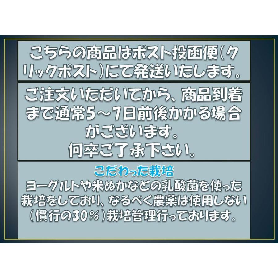 野菜ソムリエの甘い黒にんにく 送料無料 500g 波動熟成 (完売しました。)  maggysfarm-towada 06