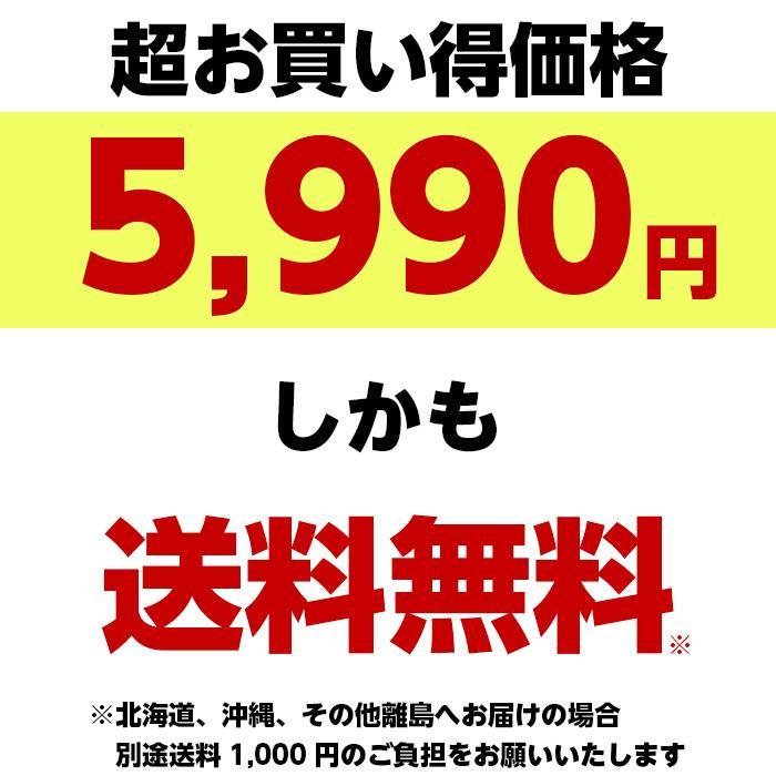 吉野家 牛すき 165g×10袋セット 冷凍 吉牛 レトルト|magokoro-eshop|05