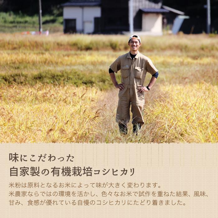 米粉のシフォンケーキ プレーン 6カットセット グルテンフリー 養生卵使用|magosaku-food|07