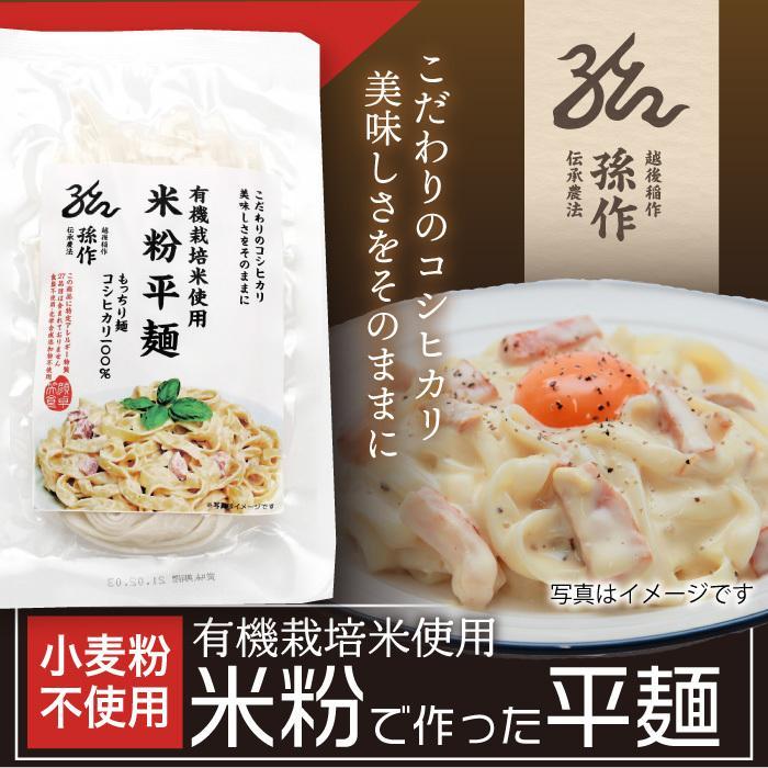 米の麺 平麺 5食パック 米粉麺 新潟県産コシヒカリ100%の米粉 グルテンフリー|magosaku-food