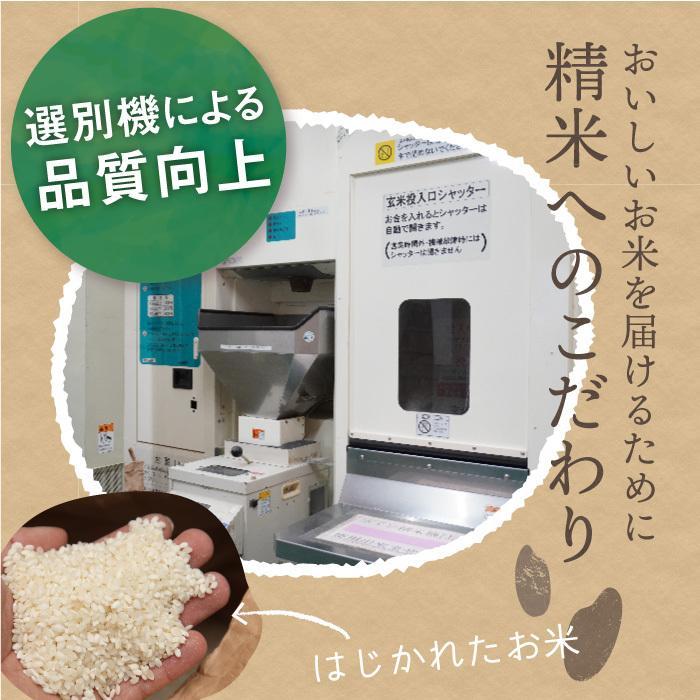減農薬栽培米 コシヒカリ 精米 10Kg 新潟県産 こしひかり|magosaku-food|04