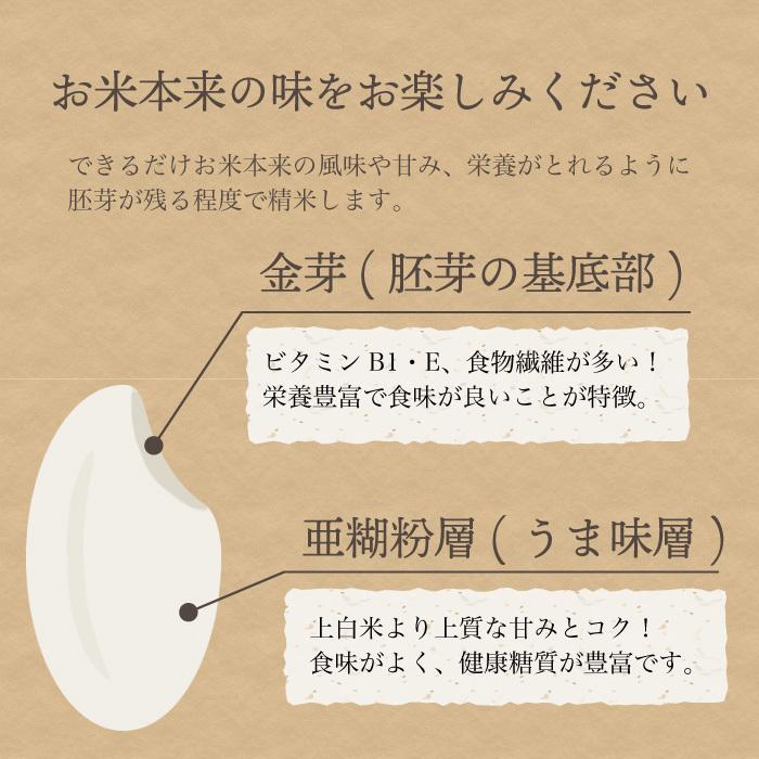 減農薬栽培米 コシヒカリ 精米 10Kg 新潟県産 こしひかり|magosaku-food|10