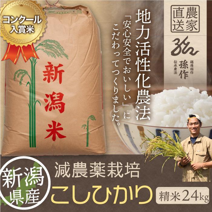 減農薬栽培米 コシヒカリ 精米 24Kg 新潟県産 こしひかり magosaku-food