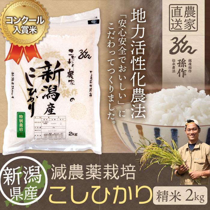 減農薬栽培米 コシヒカリ 精米 2Kg 新潟県産 こしひかり|magosaku-food