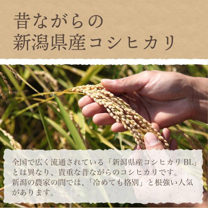 コシヒカリ 有機栽培米 無農薬 玄米 5Kg 新潟県産 こしひかり お米 magosaku-food 06